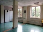 Geschäftsraum  - Buzet (04374)