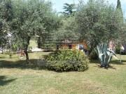 Istrien Haus  - Novigrad (03406)