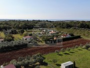 Landwirtschaftliche - Novigrad (03804)